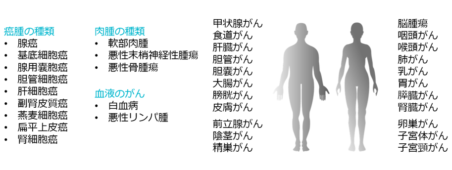 癌種・肉腫・全身のがん・血液のがん